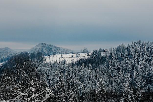 Zapierający dech w piersiach zimowy śnieżny krajobraz górski drewniane domy lasy we mgle zachmurzone niebo