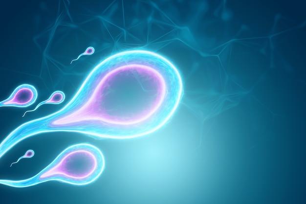 Zapłodnienie komórki jajowej przez plemniki. ciąża, leczenie niepłodności, macierzyństwo. ilustracja 3d, renderowanie 3d.