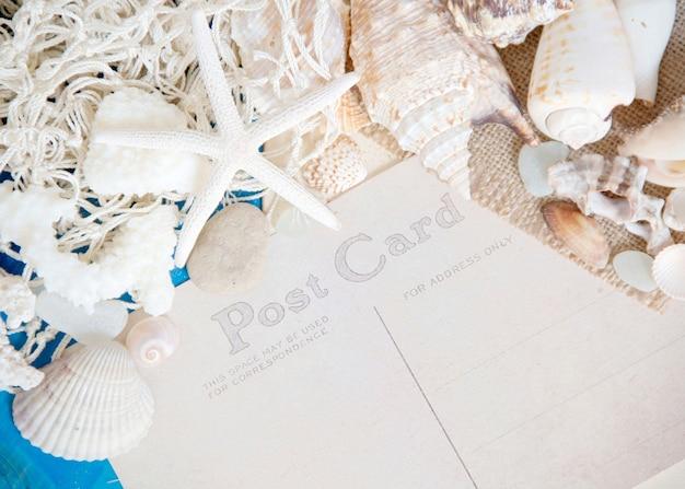 Zarabia netto i seashells na błękitnym drewnianym ściany zakończeniu up z pocztówkową papierowej kopii przestrzenią