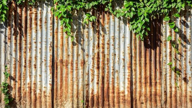 Zardzewiała ściana z blachy ocynkowanej