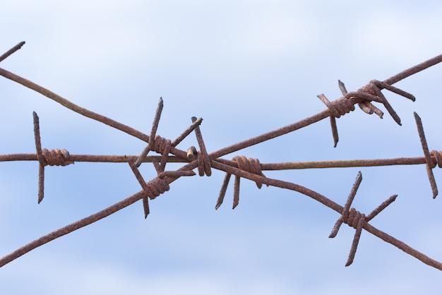 Zardzewiały drut kolczasty