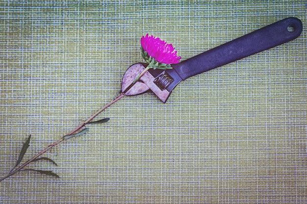 Zardzewiały klucz, ściskając czerwony kwiat aster, nakrapiane zielone tło, streszczenie.