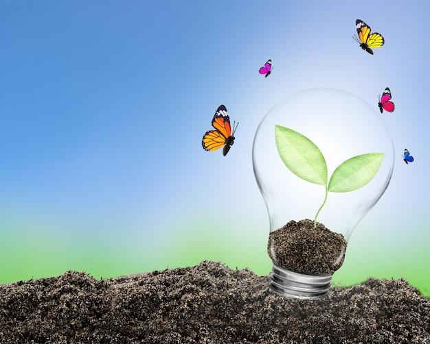 Żarówka z roślin rosnących w środku na ziemi i motyla. koncepcja ochrony środowiska