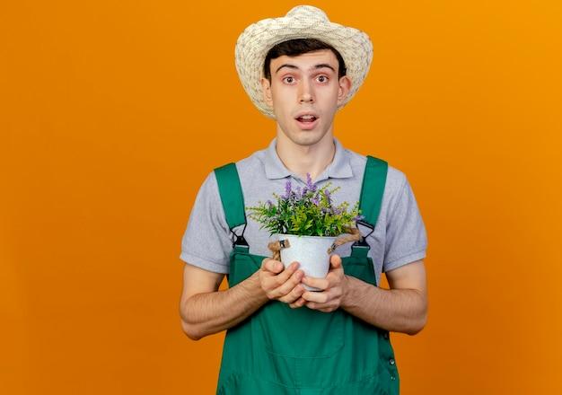Zaskoczony młody męski ogrodnik w kapeluszu ogrodniczym trzyma kwiaty w doniczce