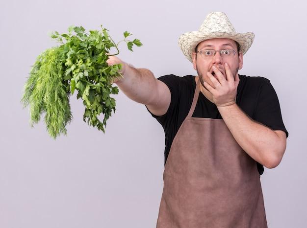 Zaskoczony młody mężczyzna ogrodnik w kapeluszu ogrodniczym trzymający koperek z kolendrą w aparacie na białym tle na białej ścianie