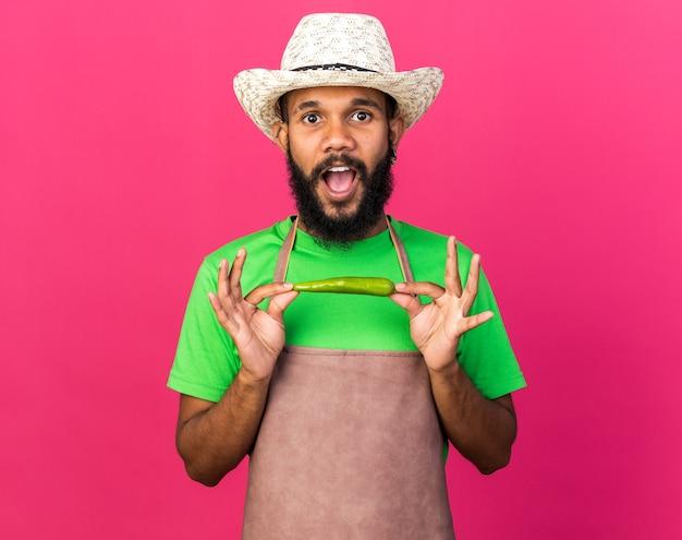 Zaskoczony młody ogrodnik afroamerykański facet w kapeluszu ogrodniczym, trzymający pieprz odizolowany na różowej ścianie