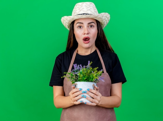 Zaskoczony piękny ogrodnik dziewczyna w mundurze na sobie kapelusz ogrodniczy trzymając kwiat w doniczce na białym tle na zielono