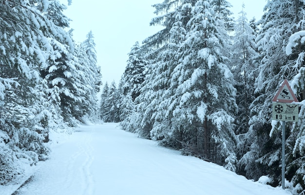 Zaśnieżona droga przez przełęcz z jodłami (austria, tyrol)