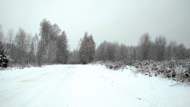 Zaśnieżona droga przez zimowy las