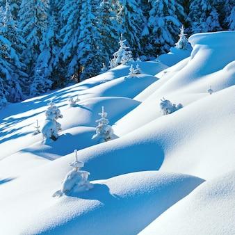 Zaspy śnieżne na pokrytym śniegiem zimowym zboczu góry i jodłami na szczycie wzgórza