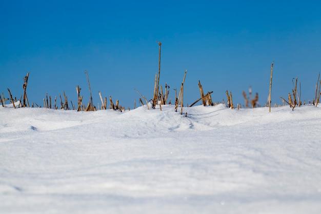 Zaspy śnieżne w zimie