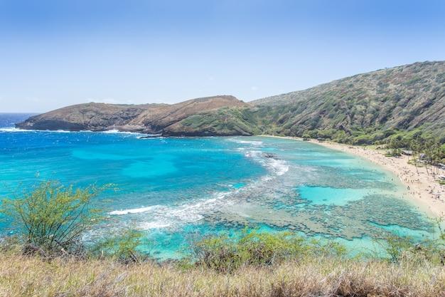 Zatoka hanauma, raj dla nurków na hawajach