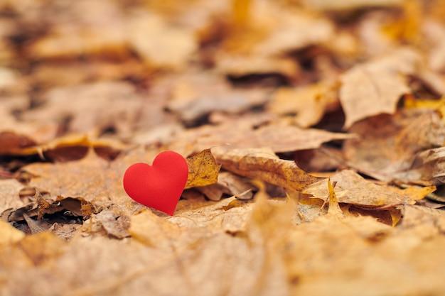 Zauroczenie, jednostronna koncepcja romantycznej miłości