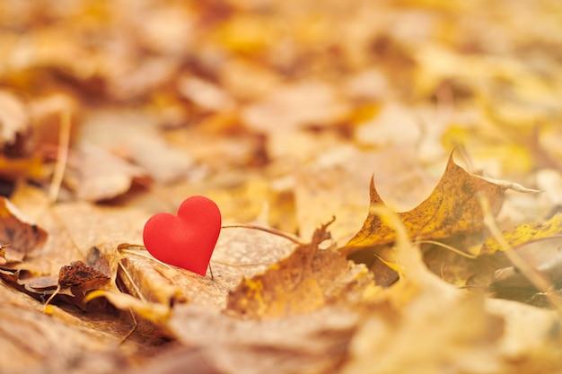 Zauroczenie lub nieodwzajemniona koncepcja romantycznej miłości.