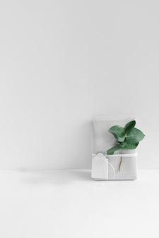 Zawijający prezenta pudełko wiążący z etykietką i gałązką na białym tle