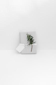 Zawijający prezenta pudełko z gałązką i pustą etykietką przeciw białemu tłu