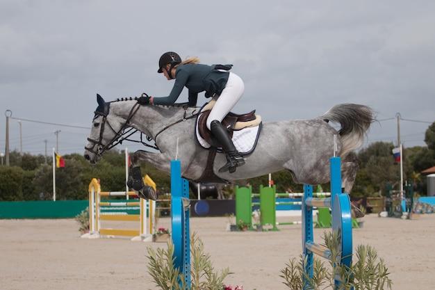 Zawody w skokach przez konie