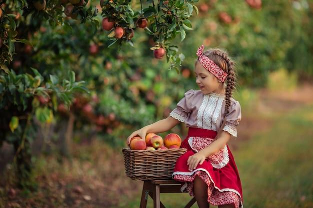 Zbieranie jabłek na wsi w ogrodzie. piękna dziewczyna w strojach vintage czerwona spódnica i solokha siedzi obok wiklinowych koszy z jabłkami