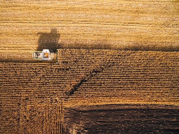 Zbieranie kukurydzy na zielonym polu. zdjęcia lotnicze nad automatycznymi kombinacjami