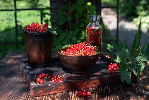 Zbierz czerwone porzeczki w miskach na drewnianym stole w ogrodzie w słoneczny dzień, z bliska.