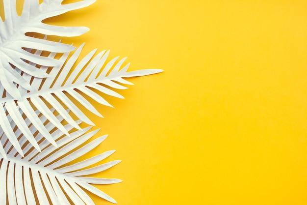 Zbiór białych tropikalnych liści i roślin liściastych