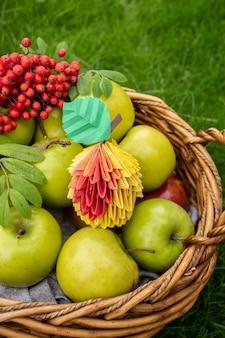 Zbiór jabłek, wiklinowy kosz na zielonej trawie, widok z góry sztuki origami papercraft z czerwonymi jagodami
