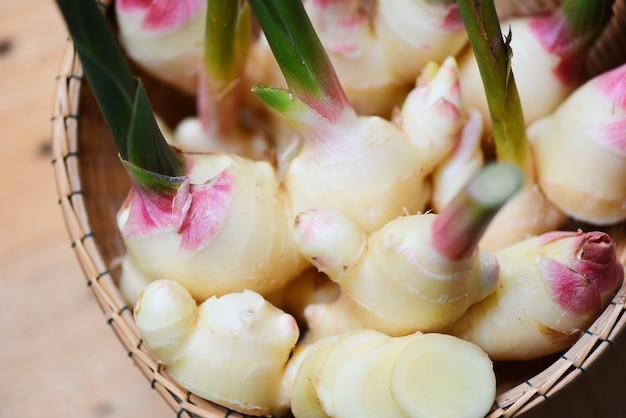Zbiór korzeni imbiru na koszyku. świeży młody imbir na naturalne zioła lecznicze i żywność