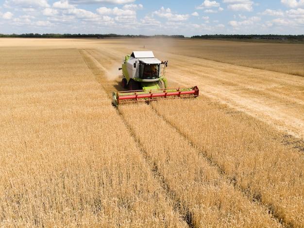 Zbiór pszenicy w lecie kombajn zbożowy maszyna rolnicza zbierająca złotą dojrzałą pszenicę na widok pola z góry