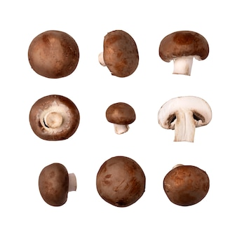 Zbiór świeżych pieczarek brązowych pieczarek, izolowana na białym tle