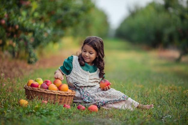 Zbiór w sadzie jabłkowym. dziewczynka w zielonej sukience śmiejąc się wesoło siedzi przy wiklinowym koszu z dojrzałymi jabłkami.