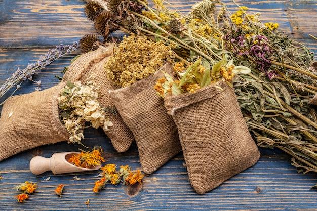 Zbiór ziół i bukiety dzikich ziół. medycyna alternatywna. naturalna apteka, koncepcja samoopieki