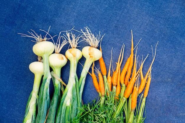 Zbiory marchwi i cebuli w ogrodzie warzywnym, na niebieskim tle.