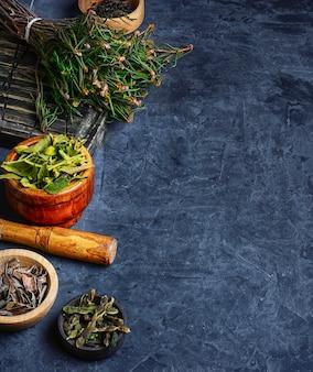 Zbiory roślin leczniczych