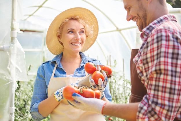 Zbliż się do ludzi dbających o swoje uprawy