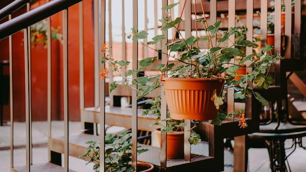 Zbliżenie balustrada i schody z kwiatami na starym czerwonym dziedzińcu. mińsk, białoruś