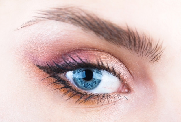 Zbliżenie brwi i niebieskie oczy. kobieta z miękką, gładką, zdrową skórą i efektownym profesjonalnym makijażem twarzy.