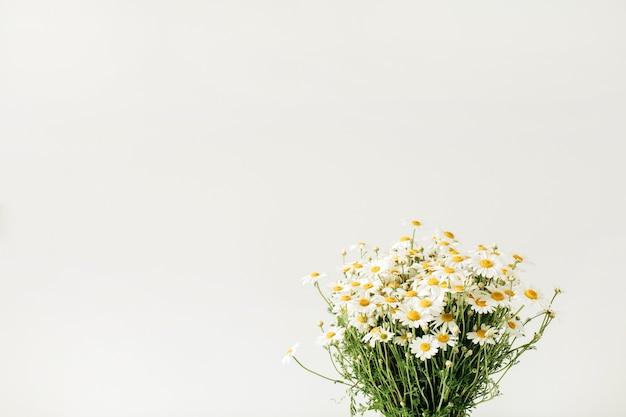 Zbliżenie bukiet kwiatów rumianku daisy na białej powierzchni