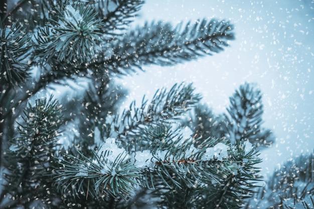 Zbliżenie choinki z płatkiem śniegu. boże narodzenie i nowy rok tło wakacje. vintage odcień koloru.