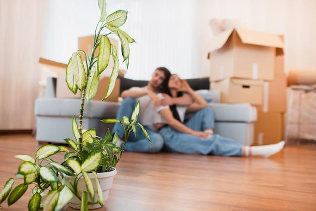 Zbliżenie. chuchająca roślina na tle z młodą szczęśliwą parą w pokoju z poruszającymi pudełkami przy nowym domem