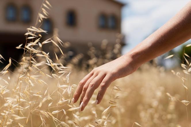 Zbliżenie dłoni dotykającej rośliny