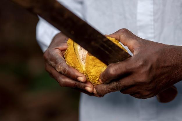 Zbliżenie dłoni otwierających owoce