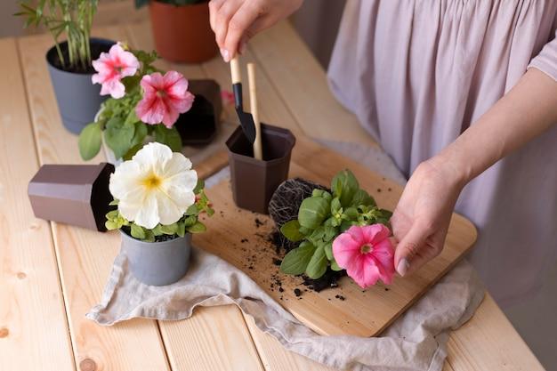 Zbliżenie dłoni trzymającej narzędzie ogrodnicze