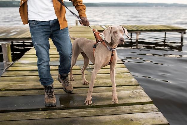 Zbliżenie Dłoni Trzymającej Smycz Dla Psa Premium Zdjęcia
