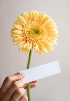 Zbliżenie dłoni trzymającej żółty kwiat i notatkę