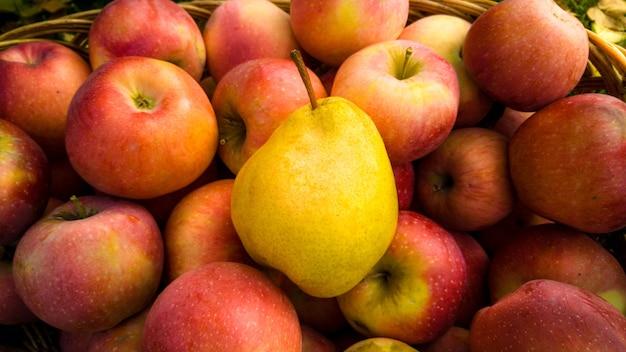 Zbliżenie dojrzałe żółte gruszki leżące na czerwonych jabłkach w koszyku