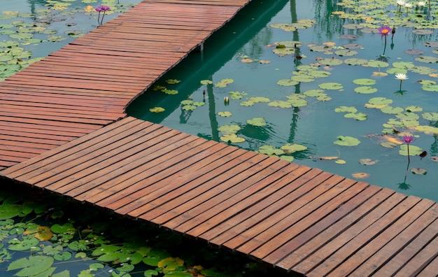 Zbliżenie drewniany most ścieżką spacerową nad stawem lotosu, pływający ogród lilii wodnych