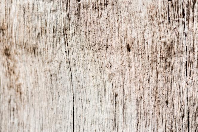 Zbliżenie drewniany textured tło