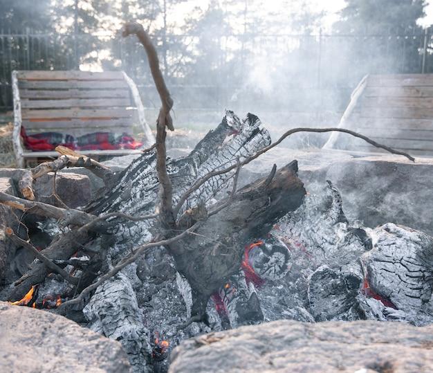 Zbliżenie dużych kłód drzewa w umierającym ogniu