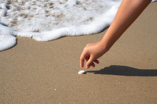 Zbliżenie dziewczyny ręki zrywania skorupa na plaży z falowym bąblem.