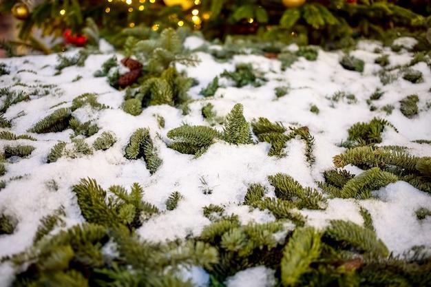 Zbliżenie gałęzie jodły pokryte śniegiem. tekstura, nieostrość. na tle rozmyta girlanda